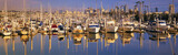 Boats docked at San Diego,CA marina