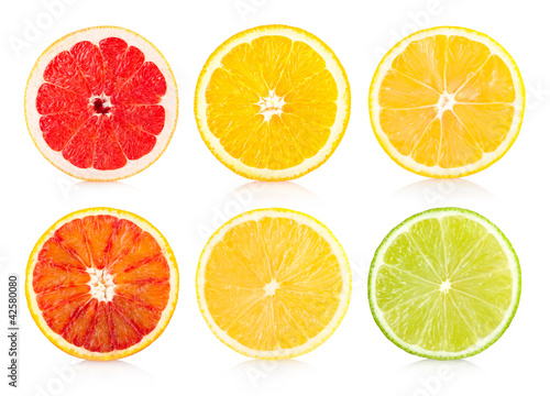 collection of 6 citrus sices
