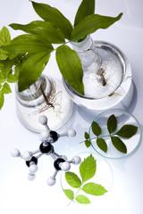 Biotechnology , Plant laboratory