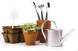 Flowers and garden tools on white background