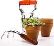 Gardening time, garden