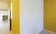 modern office interior design, yellow walls