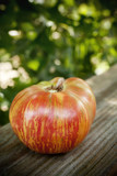 Red and Yellow Speckled Tomato
