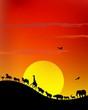 wild animal silhouette