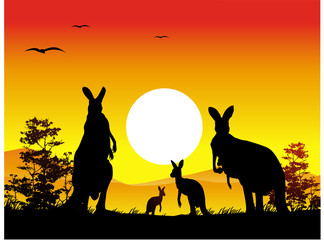 Australia sunset with kangaroo family silhouette