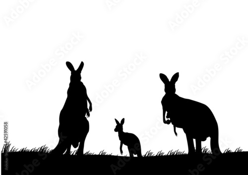silhouette of the kangaroo family australia