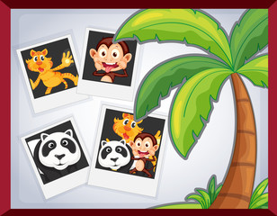 animal photoframe
