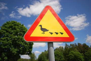 Achtung Enten (Schwedisches Verkehrsschild)