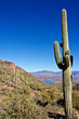 Arizona's Tonto National Monument