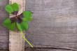 Glücksmomente - ein Kleeblatt