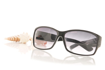 Womens Sunglasses with Shells in Background