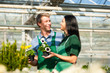 Female and male gardener in market garden or nursery