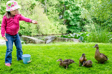 Pretty little girl feeds ducks at a neighbourhood pond
