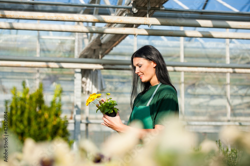 Female gardener in market garden or nursery