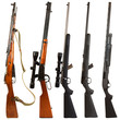 canvas print picture - Rifles