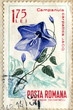 "Canceled romanian stamp ""Carpathian harebell"""
