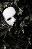 Masquerade - Phantom of the Opera Mask on Ivy Wall - 42633221