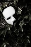 Fototapety Masquerade - Phantom of the Opera Mask on Ivy Wall