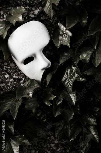 Masquerade - Phantom of the Opera Mask on Ivy Wall