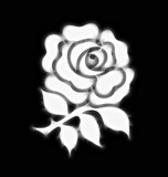 Abstract stylised national rose emblem of England