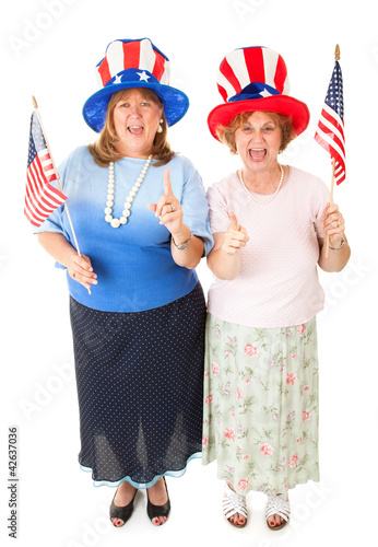 Ladies of the Tea Party