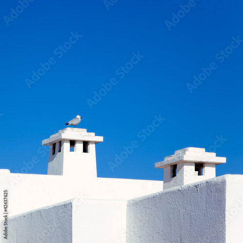Balearic Mediterranean white houses with seagull