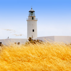 La Mola lighthouse in formentera with golden grass