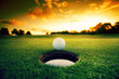canvas print picture - Golf Ball near hole