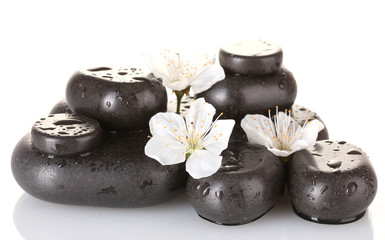 Black spa stones with flowers and petals isolated