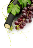 bottle of wine and ripe grapes isolated on white