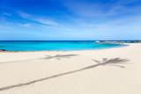 Fototapety Els Pujols Formentera white sand turquoise beach