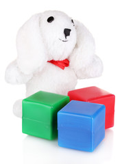 Sitting bunny toy and color cubes isolated on white