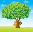 animals under tree
