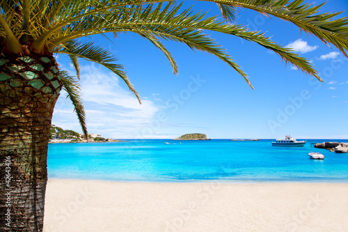 Ibiza Patja des Canar beach with turquoise water