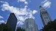 Timelapse Madison Square Park