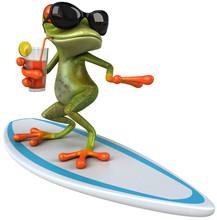 Żaba surfingu