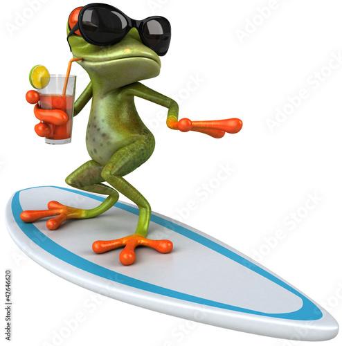 Leinwandbild Motiv Frog surfing