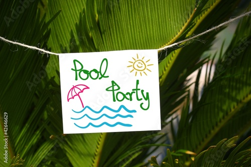 zettl palmen pool-party I