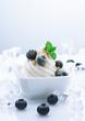 Frozen Blueberry Joghurt