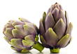 Two Artichoke Fruits Isolated