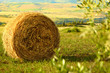 Tuscany Landscape With  Hay Bales