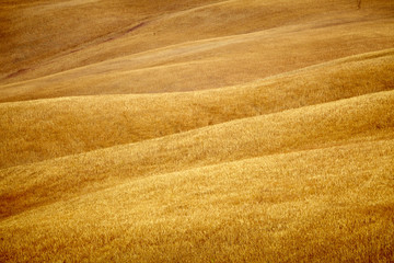 Scenic view of Tuscany landscape, Italy .  Nature background