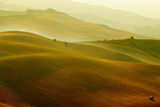 Fototapeta Scenic view of Tuscany landscape, Italy .  Nature background