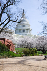 US Capitol Building in Spring