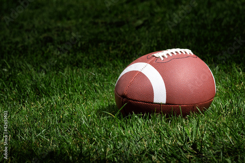 canvas print picture Football in the spotlight
