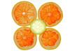 Grapefruit Zitrone
