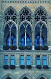 gothic cathedral window(Vienna)