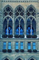 gothic cathedral window(Vienna)