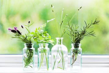 Jars of fresh herbs on window cill