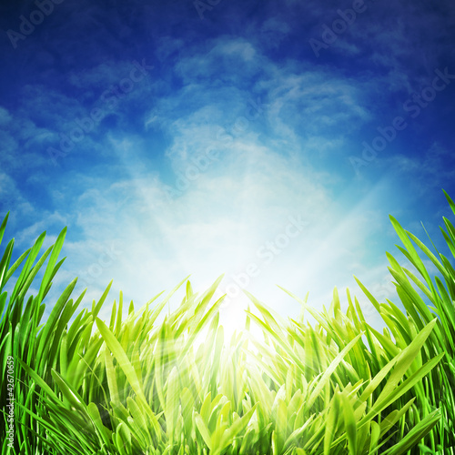Abstract natural backgrounds under the blue skies